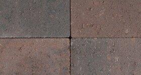 Bruin-Zwart (genuanceerd)